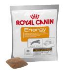 Royal Canin Energy, 30-pack